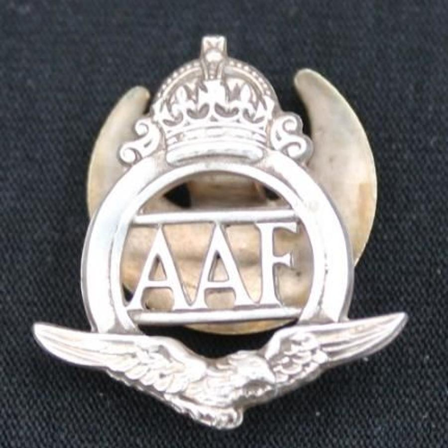 Auxiliary Air Force Lapel Badge